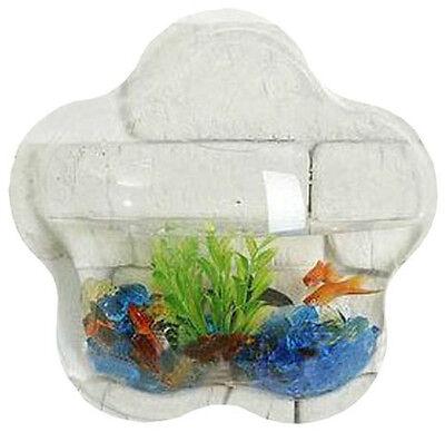 Wall Mount Hanging Betta Fish Bubble Aquarium Bowl Tank Star Mini