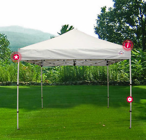 10' x 10' Canopy tent with sides and roller bag