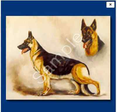 Shepherd Personal (GERMAN SHEPHERD [aka Alsatian] - Personal Notecards with envelopes [6 cards])
