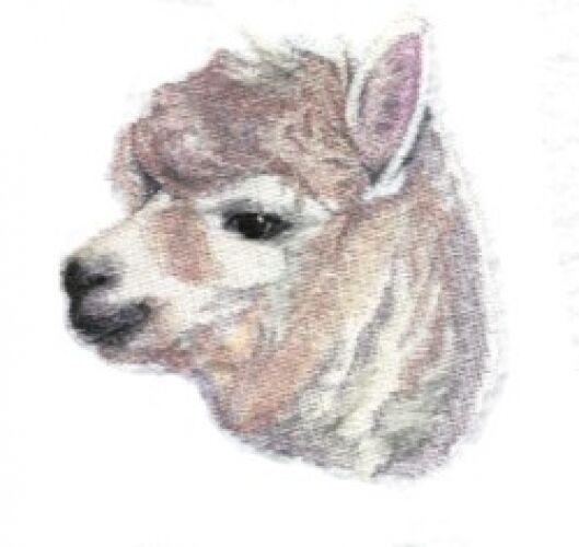 Embroidered Fleece Jacket - Alpaca BT4487 Sizes S - XXL