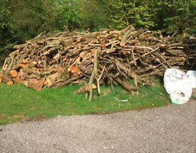 Length's of firewood (appx. 6ft) for sale