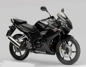 Looking for a cbr125 or cbr250