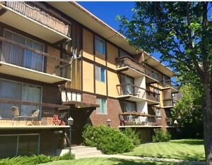 $925 Bright Pet-Friendly 1bdrm in Crescent Heights