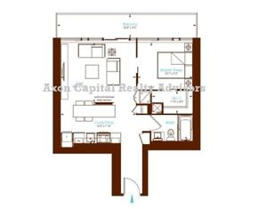 Downtown Luxury Furnished One Bedroom Condo (sublet/assign)