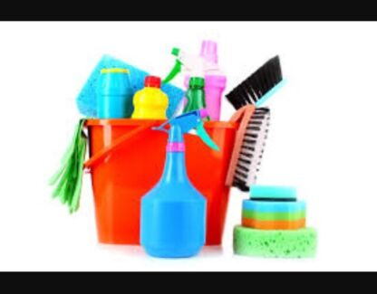 Domestic house or office CLEANER & IRONING, BOND CLEANING AVAILABLE Burleigh Heads Gold Coast South Preview