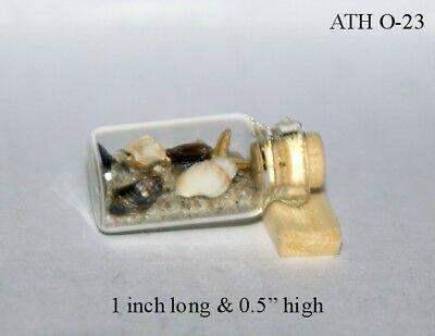 Beach Jar Artisan Dollhouse Miniature 1:12 scale