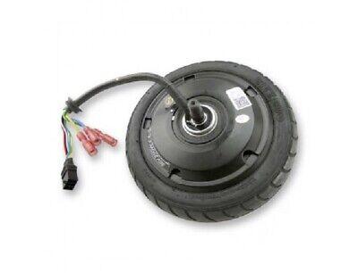 Motor Trasero M28 36V 250W para patinete eléctrico ES809 CITYBUG 2