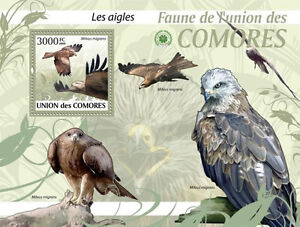 Eagles Birds COMORES 2009 MNH Mi. Bl.520 #CM9414b - <span itemprop='availableAtOrFrom'>Olsztyn, Polska</span> - Eagles Birds COMORES 2009 MNH Mi. Bl.520 #CM9414b - Olsztyn, Polska