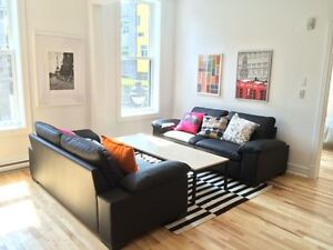 UQAM,Concordia,McGill,Female Only,Beautiful modern and furnished