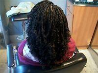 Twist/single plait,faux locs, crochet braid,Ghana/feed in braid, closure,weaveon,Wigs,T444Z, Marykay