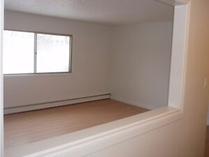 Character Suite Downtown Walking distance to Grant Mac!