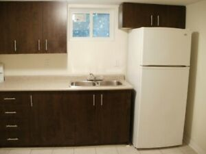 Renovated 2 BR Apartment for Rent