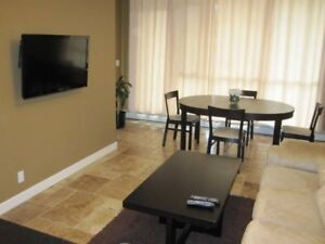 Furnished Luxurious Downtown Riverfront Condo, 1 Bedroom + Den