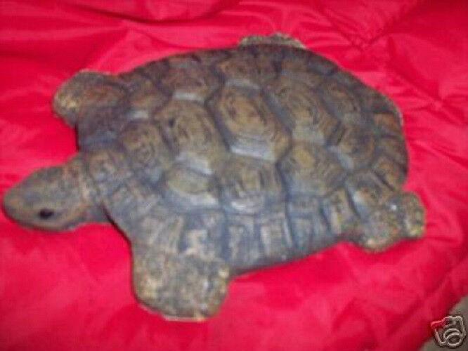 turtle plastic mold reusable concrete plaster casting
