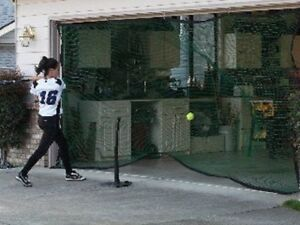 Baseball Soccer Golf Hockey Softball Garage door net NEW $45 ...