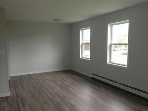 Renovated Two Bedroom Apartment in a Great Location!