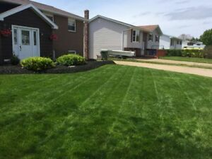 Lawn Care - Landscaping - Lawn Mowng