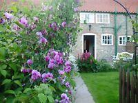 Pretty period cottage