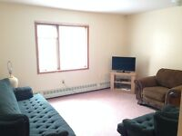 Furnished Two Bedroom Apartment - Downtown