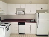 Renovated Two Bedroom Downtown! Great Location!