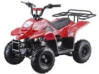 Brand New Kid's MiniSpider Quad/ATV 110cc TaoTao on SALE Now!