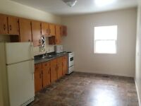 Two Bedroom Apartment For Rent - Downtown