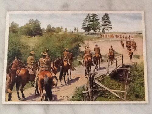 Купить Cavalry Scouting Military Postcard Horses Men On Horseback Scott City, KS
