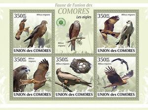 Eagles Birds COMORES 2009 MNH Mi. 2382/86 #CM9414a - Olsztyn, Polska - Eagles Birds COMORES 2009 MNH Mi. 2382/86 #CM9414a - Olsztyn, Polska