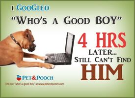 PetandPooch - Where all our pets are loved!