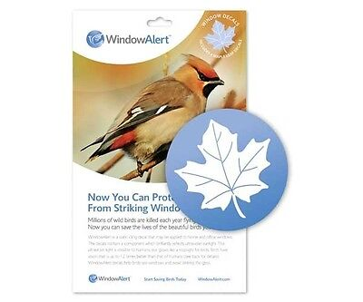 Window Alert Bird - Window Alert 4 Maple Leaf Decals Protect Wild Birds