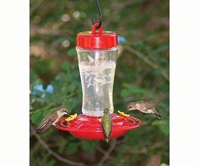 12 Ounce Hummingbird Feeder - HOMESTEAD 12 oz. ETCHED GLASS HUMMINGBIRD FEEDER, FREE USA SHIPPING          #dm