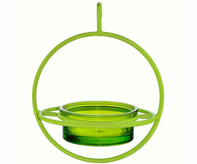 Couronne Co Lime Hanging Sphere Bird Feeder with Perch COURM047200L