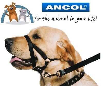 Ancol Nylon Dog Training Head Halter Halti No Pull Obedience Aid Size 3-4 Medium