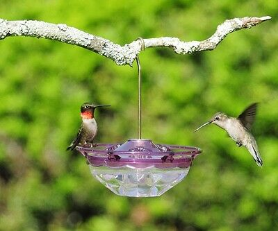 ASPECTS #434 HummBlossom 4 oz HUMMINGBIRD FEEDER, PLUM COLOR, FREE SHIPPING