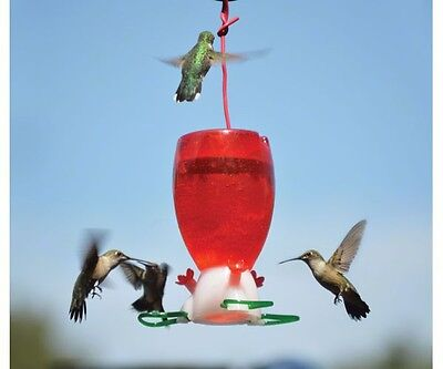 Songbird Essentials BIG RED 10 oz. HUMMINGBIRD FEEDER, #SE952, FREE USA SHIPPING