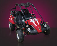 Hammerhead 150 GTS - Dune Buggy-Go Kart NEW on Super Sale Now!