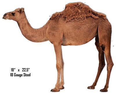 Camel Animal Wall Art Laser Cut Out Metal Sign 18x22