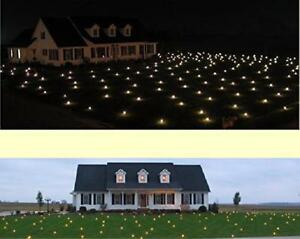New Christmas White Lawn Lights