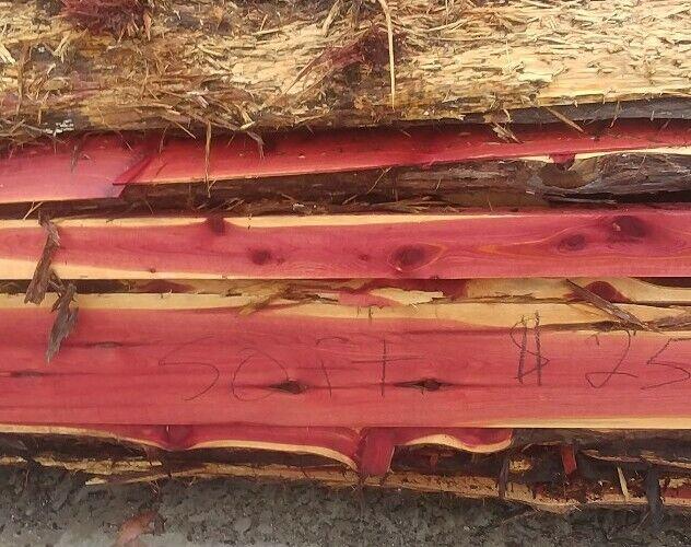 4 Red Cedar Live Edge Wood Slab  Lumber Rustic Woodwork 24in