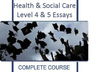 Essay On Healthy Eating Habits Criteria For Essay Writing Letter Persuasive Essay Example High School also How To Write A Thesis Essay Mary Wollstonecraft Essays English As A Second Language Essay