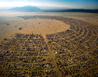 2 Burning Man Tickets for Sale.