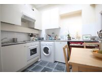 Own Garden, Wood Floors,High Ceilings, Newly Decorated, convenient Location,Bills Included
