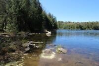 Lot on Northern Lake for Under $90k