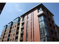 All bills included Fully furnished 2 bedroom apartment ready to move into