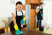 Experience Independent Cleaning Team Available