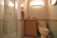 Porte de douche en verre, Glass shower door.