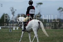 Horse riding lessons Healesville Yarra Ranges Preview
