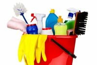 Professional cleaner available