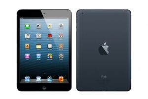Ipad Mini 2   16GB Mint Condition Store Warranty Only $170