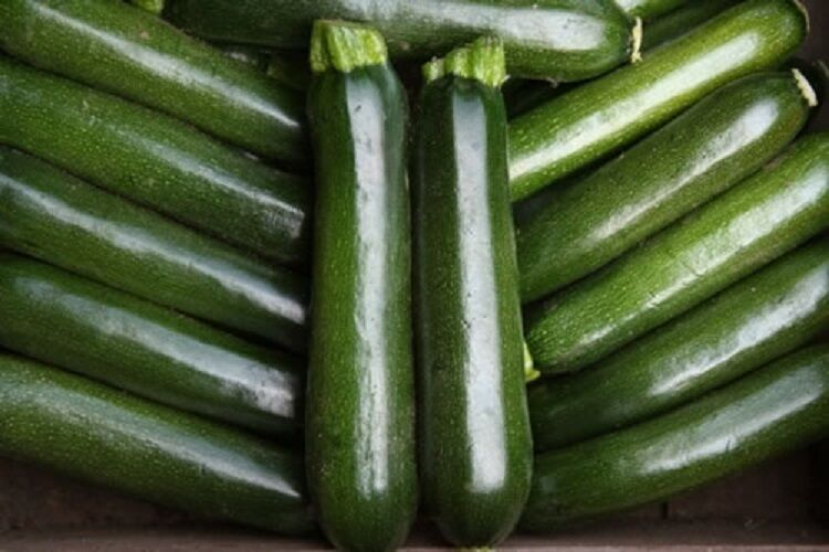 courgette f1 minuit 10 graines l gumes fruits ebay. Black Bedroom Furniture Sets. Home Design Ideas